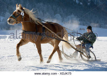 Horse drawn sleigh in Rottach-Egern Upper Bavaria Germany - Stock Photo