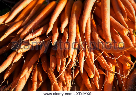 Fresh organic carrots at a farmers market - Stock Photo