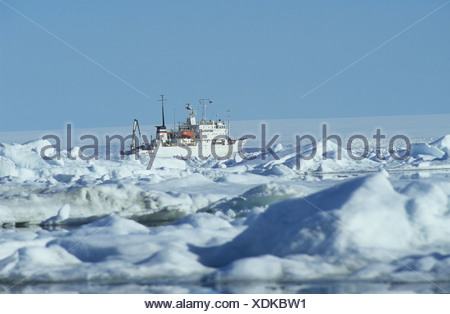Ice breaker MS Multanovskiy in the polar sea, Spitsbergen, Svalbard, Arctic, Norway - Stock Photo