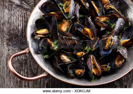 Boiled mussels in copper cooking dish on dark wooden background close up - Stock Photo