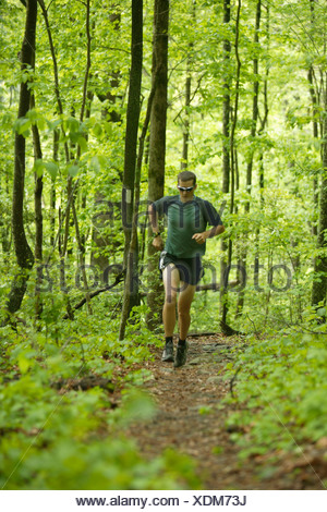 Male trail runner in a lush green forest. - Stock Photo