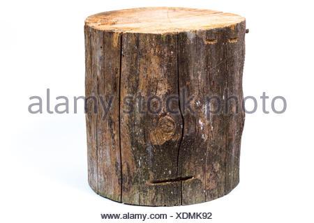 log isolated on a white background - Stock Photo