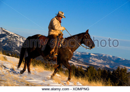 Mature man riding a horse in snow covered field - Stock Photo