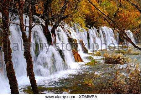 View a freshwater stream with waterfall a walking path in autumn in JiuZhaiGou National Park in Sichuan Province P.R. China. - Stock Photo