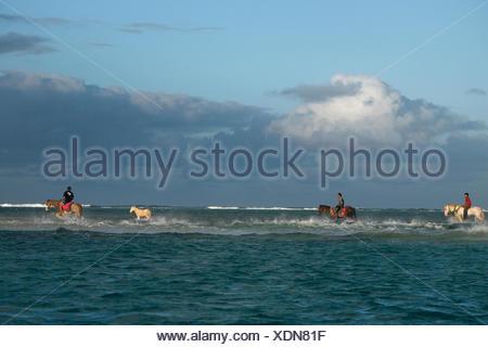 Men cross from the main island of Lifuka to Uoleva at low tide. - Stock Photo