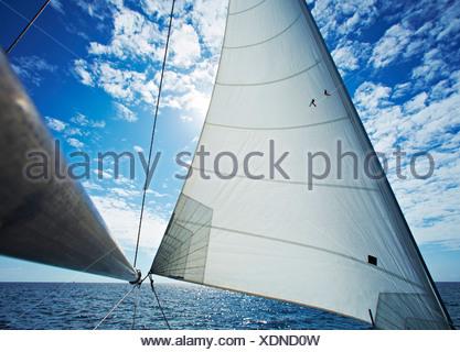 Sailing boat on baltic sea