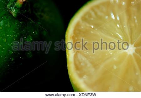 Lime fruits Citrus aurantiifolia Limetten Rautengewaechse Rutaceae Zitrusfruechte citrus fruits Frucht Nahrungsmittel food - Stock Photo
