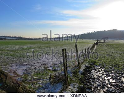Barbed Wire On Grassy Field Against Cloudy Sky - Stock Photo