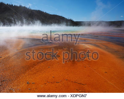 Grand Prismatic Spring, Midway Geyser Basin, USA, Wyoming, Yellowstone National Park Stock Photo