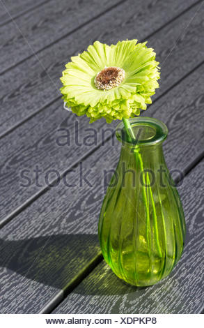 Light green flower with a glass vase on a wooden table - Stock Photo
