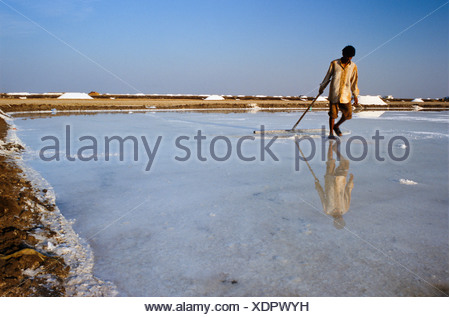 Worker in the saltpans, Malya, Gujarat, India, Asia - Stock Photo
