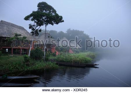 Ecuador Napo Wildlife Center Yasuni National Park Quechua Community Amazonia morning fog foggy rainforest tropical tropics - Stock Photo