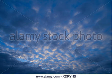 Small fluffy clouds, cirrocumulus - Stock Photo