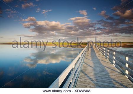 The Kellys beach boardwalk across lagoon beaches - Stock Photo