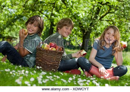 Kids in meadow, eating apples - Stock Photo