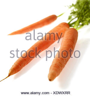 Carrots, Daucus carota, vegetables, white background, - Stock Photo