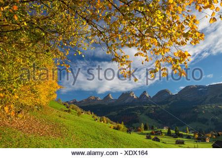 Toggenburg, Unterwasser, SG, Churfirsten, mountain, mountains, autumn, reflection, SG, canton St. Gallen, Switzerland, Europe, - Stock Photo