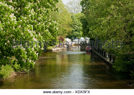 Lock on the River Thames at Pangbourne in Berkshire Uk - Stock Photo
