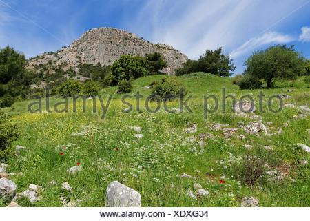 Dilek Mountains, bei Priene, Güllübahçe, Aydin province, Aegean region, Turkey - Stock Photo