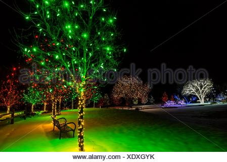 A Hudson Christmas (holiday Light Show At Hudson Gardens .