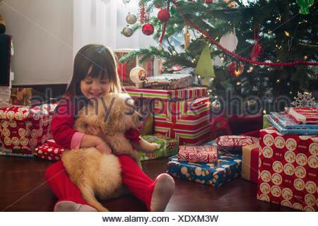 Girl hugging golden retriever puppy dog at Christmas - Stock Photo