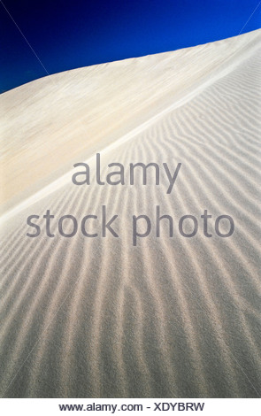 Delicate ripples on the surface of a sand dune catch the ocean winds. - Stock Photo