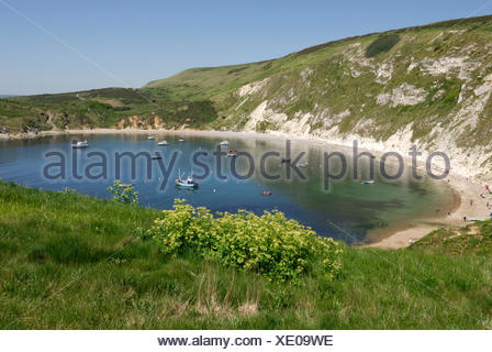 Lulworth Cove, Lulworth, Dorset, southern England, England, United Kingdom, Europe - Stock Photo