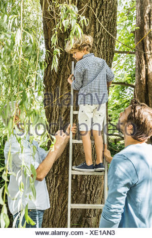 Boy climbing up tree ladder in garden - Stock Photo