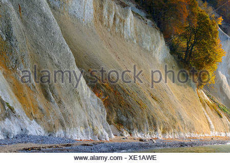 chalk cliffs of Ruegen, Germany, Mecklenburg Vorpommern, NLP Jasmund - Stock Photo