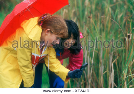 Children take a closer look - Stock Photo