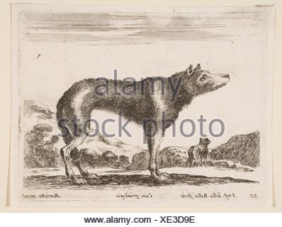 Plate 20: wolf, from 'Various animals' (Diversi animali). Series/Portfolio: 'Various animals' (Diversi animali); Artist: Stefano della Bella - Stock Photo