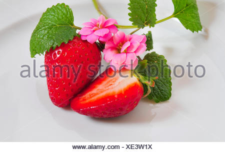 bloom blossom flourish flourishing plate red strawberries food aliment at home - Stock Photo