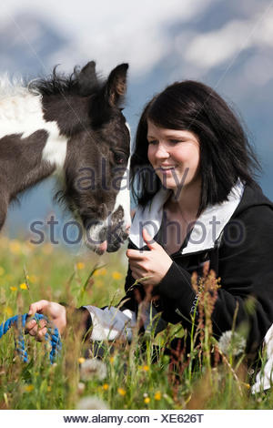 Young woman with a Gypsy Vanner or Tinker horse foal on a meadow, pinto, black and white, North Tyrol, Austria, Europe - Stock Photo
