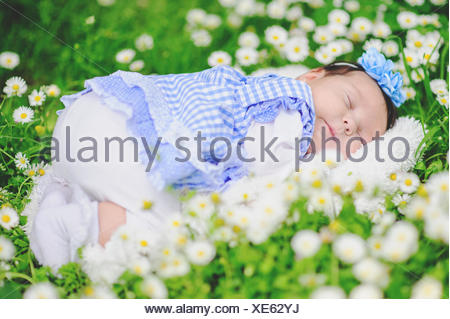 Baby sleeping in a field of daisies - Stock Photo