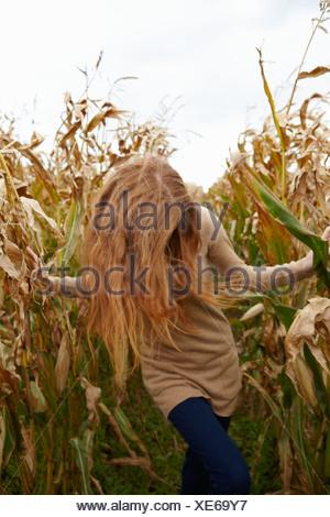 Teenage girl walking in cornfield - Stock Photo