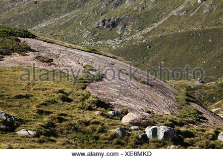 Glacier-polished rock, Kaunertal, Oetztal Alps, Tyrol, Austria, Europe - Stock Photo