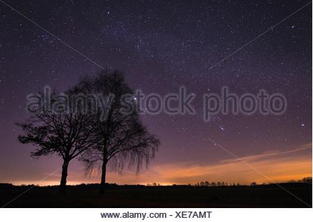 starry sky, vechta district, niedersachsen, germany - Stock Photo