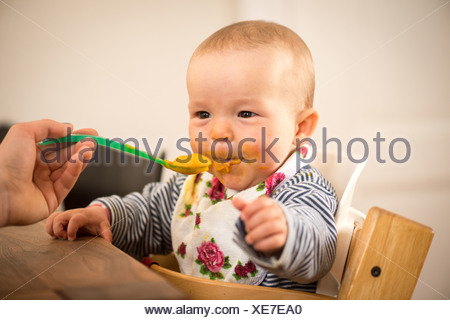 Berlin, Germany, 8-month-old baby while Fuettern - Stock Photo