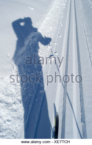 Shaddow of cross-country skier in the snow int the cross-country ski run - Stock Photo