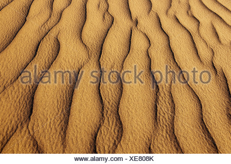 Namib-Naukluft National Park Namibia Sand dune patterns Namib-Naukluft National Park - Stock Photo