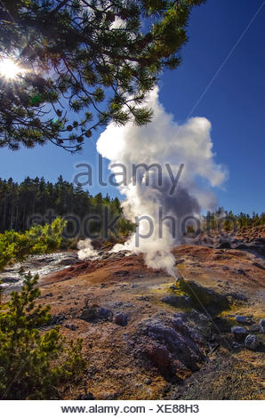 Steamboat Geyser, Norris Geyser Basin, Yellowstone National Park, Wyoming, USA - Stock Photo