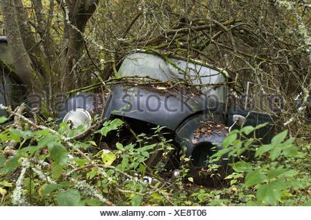 Scrap car (old Dampf-Kraft-Wagen) in forest, Sweden - Stock Photo