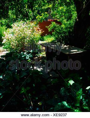 Creagh, Baltimore, Co Cork, Ireland; Apple Tree In A Walled Garden - Stock Photo