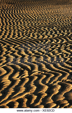 Ripples in Sand on Beach, First Encounter Beach, Eastham, Cape Cod, Massachusetts, USA - Stock Photo