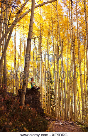 A young woman meditates peacefully on a rock in the midst of a sea of gold leaves. - Stock Photo
