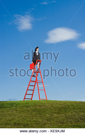 Businesswoman with red briefcase standing on top of red ladder in grass field - Stock Photo