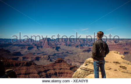 Rear view of a young man looking at view, grand canyon, arizona, america, USA - Stock Photo