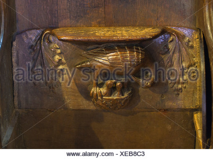 A Pelican in her piety decorating a Misericord in Lavenham Church Suffolk - Stock Photo