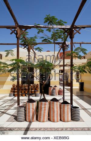 Spices in sacks, pergola, traditional market, Souk, marina, Hurghada, Egypt, Red Sea, Africa - Stock Photo