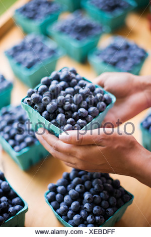 Organic fruit displayed on a farm stand. Blueberries in punnets. - Stock Photo